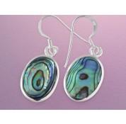 Sterling Silver Oval Paua Shell Drop Earrings